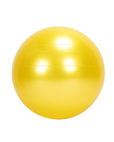 Ballon ABS Gym Ball / Diam 45